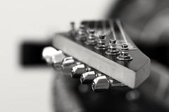 Guitar (slckaydin) Tags: guitar elektro gitar ltd esp tel enstruman muzik music rock metal