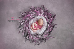 Ece (Julia Yerdelen Babygraphy Istanbul) Tags: baby babyphotos babyphotographer newborn photographer newbaby fotoğrafçı fotoğrafçılar yenidoğan yenidoğanbebek bebek bebekler