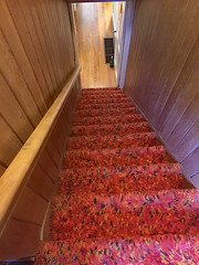 Down the Rabbit Hole (BKHagar *Kim*) Tags: bkhagar stairs stairway stairwell carpet carpeting shag vintage downstairs sale estatesale bellemeade tn tennessee