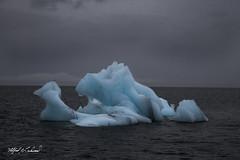 Sea Serpent_MG_9036 (Alfred J. Lockwood Photography) Tags: alfredjlockwood nature seascape iceberg seaserpent clouds moody princewilliamsound valdez alaska autumn noon fjord pacificocean water