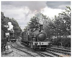 2018-Mid Suffolk Light  Railway 17 June 2018 (Keith Halton) Tags: midsuffolklightrailway suffolk railway illingworth mitchell brockford steamloco saddletank hudswellclarke y7 985 wetheringsett
