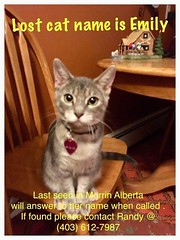 Lost sm tabby cat in #Morrin 403- 612-7987 Pls share watch RT to get Emily home YYC Pet Recovery shared Janice Sluys's post. 2018-06-21T02:48:25.000Z by YYC Pet Recovery original fb post-click here http://bit.ly/2lkOtfU page- http://bit.ly/2BxTYim (yycpetrecovery) Tags: ifttt june 21 2018 0111am lostcat lost cat morring dsh greywhite grey tabbywhite tabby morrin