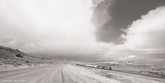 Ahead Of The Storm (LostOzarkRambler) Tags: bnsf burlingtonnorthernsantaferailroad railroad train freighttrain coveredhoppertrain wyoming nikond700 blackandwhite bw monochrome