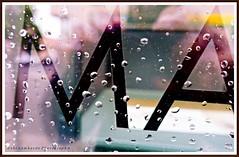it´s rainy today (gabi lombardo) Tags: drops regentropfen gocce spiegelungen reflections riflessi letterealfabeto buchstaben