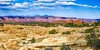 DSCF4870 (rdpe50) Tags: landscape desert rockformations shrubs needlesdistrict canyonlandsnationalpark utah usa