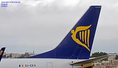 EI-EKX LMML 21-06-2018 (Burmarrad (Mark) Camenzuli Thank you for the 12.2) Tags: airline ryanair aircraft boeing 7378as registration eiekx cn 35030 lmml 21062018
