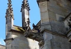 2018 24 mai ND Epine extérieur (areims) Tags: église lepine gargouille extérieur eglise