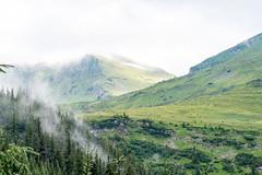 radnai-havasok-201806-062 (vorospeter.fules) Tags: radnaihavasok túra borsa