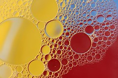 Primary Colours (Karen_Chappell) Tags: colourful colours colour color liquid red yellow blue bubble bubbles oil water macro abstract canonef100mmf28usmmacro circle round