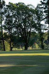 Harburn 0618 1st Approach (Jistfoties) Tags: golf golflandscapes harburngolfcourse harburngolfclub landscapes westlothian