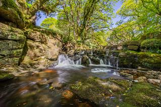 River Avon, Dartmoor