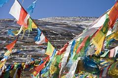 More prayer flags (bag_lady) Tags: tibet mountainpass prayerflags khatmandutolhasa buddhism tropula 4500m lhatsetoshigatse