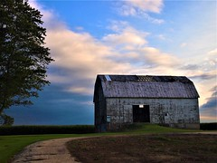 Burnside Barn, rural MI (Explore!) (SCOTTS WORLD) Tags: adventure abandoned america architecture angle agriculture corn maize trees texture weathered woods green grass building bluesky barn burnside michigan midwest fun fall field light landscape pov perspective olympusepm1 sky shadow sunlight september 2017 outdoors outside