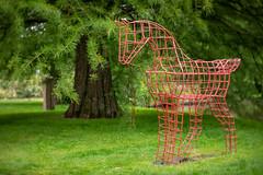 Steel-Horse.jpg (NoBudgetPhoto.de) Tags: sculpture rosengarten 1839 pferde zweibrücken achromat skulptur steel horse stahl lomography rheinlandpfalz deutschland de