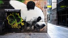 Panda Mural, Gordon Lane, Glasgow (Joe Son of the Rock) Tags: mural panda mitchelllane glasgow gordonlane touit2812