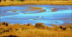Estuary (Mary Faith.) Tags: estuary tide sand sea rushes blue goldtmi