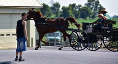 amish family (bluebird87) Tags: amish man boy girl horse wagon nikon d7200
