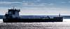 Algoma Harvester (Nicober!!!) Tags: quebec canada fleuve stlaurent stlawrence river ship vracquier bulkcarrier algoma harvester