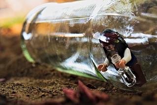 Minifig in a Bottle