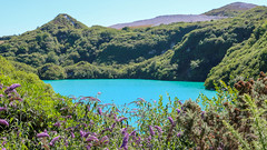 Blue Lagoon (A.Roddis) Tags: water blue lagoon cornish cornwall mine china clay wheal martyn disused overgrown canon eod 750d mining open pit