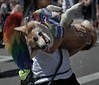 Carry Me (Scott 97006) Tags: woman female lady carry pet dog canine animal happy content cute parade