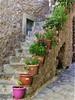 Flowers (Wim Ederveen) Tags: flowers stair creta crete kreta rethymnon flowerpot greece griekenland stairs stairway