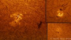 regiones activas 2713, 2714 y 2715 - 20/06/2018 (Jordi Sesé) Tags: sun solar chromosphere prominences pstmod asi174mm