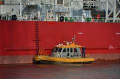 Seajacks Scylla + KRVE 62 (Hugo Sluimer) Tags: portofrotterdam port haven wiltonhaven nlrtm onzehaven scheepvaart schiedam zuidholland holland nederland