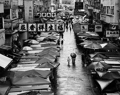 One direction (matt.surridge) Tags: gs1 120mm mediumformat asia rain bnw 500px streetphotography kowloon hongkong