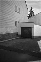 wo der zonk wohnt (fluffisch) Tags: fluffisch bessungen darmstadt leica leicam6 summiluxm35f14 preasph summilux 35mm f14 rangefinder messsucher analog film kodak trix400