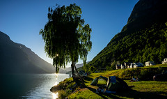 Scandinavian summer night (andre.jaingam) Tags: scandinavia summer birch sunset norway sky water green mountain hiking tourist tree tent camping