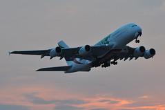 EK0004 LHR-DXB (A380spotter) Tags: takeoff departure climb climbout belly gearinmotion gim retraction dusk sunset airbus a380 800 msn0158 a6eez expo2020dubaiuaeofficialpremierpartner decal sticker decals stickers logojet livery scheme colours green 2018 38m longrangeconfiguration 14f76j429y الإمارات emiratesairline uae ek ek0004 lhrdxb runway09r 09r london heathrow egll lhr