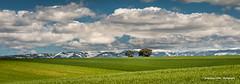 Green field (Ignacio Ferre) Tags: segovia comunidaddecastillayleón españa spain sierradeguadarrama campo field landscape paisaje panorama nubes clouds verde green nikon montaña hierba cielo ngc