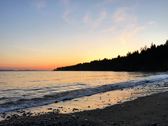 IMG_2952.jpg (Paul T. Marsh/PositivePaul) Tags: paulmarshphotography paultmarsh victoriabc vancouverisland lightroomcc iphone april2018 canada pacificnorthwest britishcolumbia wwwpaulmphotographycom 2018