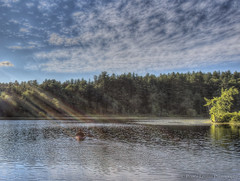 Sunshine on my shoulder (Pearce Levrais Photography) Tags: pond cloud outdoor outside nature canon hdr boat kayak sun sunlight sunrays summertime summer picoftheday photooftheday explore nh newhampshire