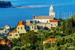 L'insenatura delle Grazie dall'alto (danilocolombo69) Tags: mare barche chiesa santuario insenatura olivi danilocolombo nikonclubit danilocolombo69