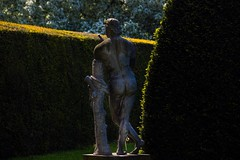Cheeky (Phil-Gregory) Tags: hardwickhall nikon sigma18250macro zoom statue nude light hedge naturephotography