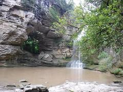 La Foradada (Xaviort) Tags: agua roca arbol