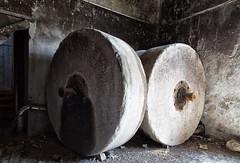 _MG_6995 (Tiziano Donati) Tags: abandoneditaly abandoned abandonedplaces abbandono cartiera papermill decay decadenza decadence decadente esplorazione exploration explorer flickr factory fishyes industrial lostitaly luoghiabbandonati