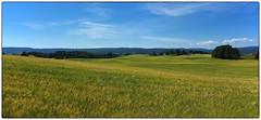 Nannestad July Panorama #4 (Krogen) Tags: norge norway norwegen akershus romerike nannestad sommer summer krogen landscape landskap fujifilmx100 imagecompositeeditor panorama