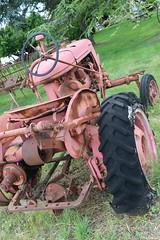 Tracteur Farmall des Lavandes de Champelle (CHRISTOPHE CHAMPAGNE) Tags: 2018 france chateau savigny beaune tracteur agricole farmall vaucluse lavande champelle