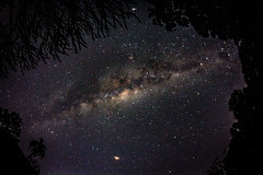 Overhead [Explore] (LivingStone Images) Tags: 13jul18 2018 365the2018edition 3652018 8mm astrophotography day194365 fisheye longexposure milkyway night samyang