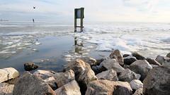 Urk, winter (ahwou) Tags: winter snow ice urk koud sneeuw ijs ijsselmeer dutchdykes zee meer water winterkoud
