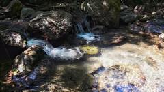 Secret fall (Giannisv66) Tags: water nature woods acqua appennino