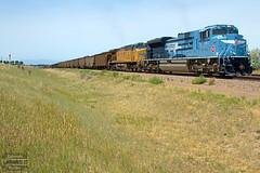 MoPac Heritage at Mesa (ColoradoRailfan) Tags: uplimonsub limonsub coaltrain sd70ace up1982 upheritageunits upheritageunit