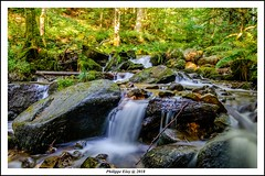 waterfall (philippeeloy) Tags: bas rhin alsace cascade rock verdure fuji xt20 1855mm f284 pose longue filtre nd variable