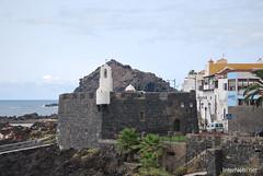 Гарачіко, Тенеріфе, Канарські острови  InterNetri  033