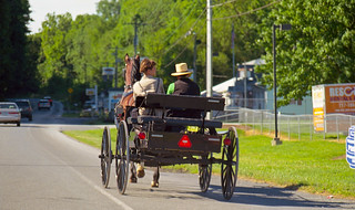 amish horse and wagon