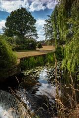 Across the water (jayneboo) Tags: attingham park national trust leica m10 voigtlander color skopar 21mm f4 landscape waterfall trees sky summer