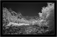 Caldera de Taburiente, La Palma, infrared (Bartonio) Tags: 720nm bw blanconegro caldera canaryislands crater cráter infrared ir islascanarias lapalma landscape modified monochrome nationalpark naturaleza nature nikkor18mm35 paisaje park parque parquenacional sonya7ir taburiente